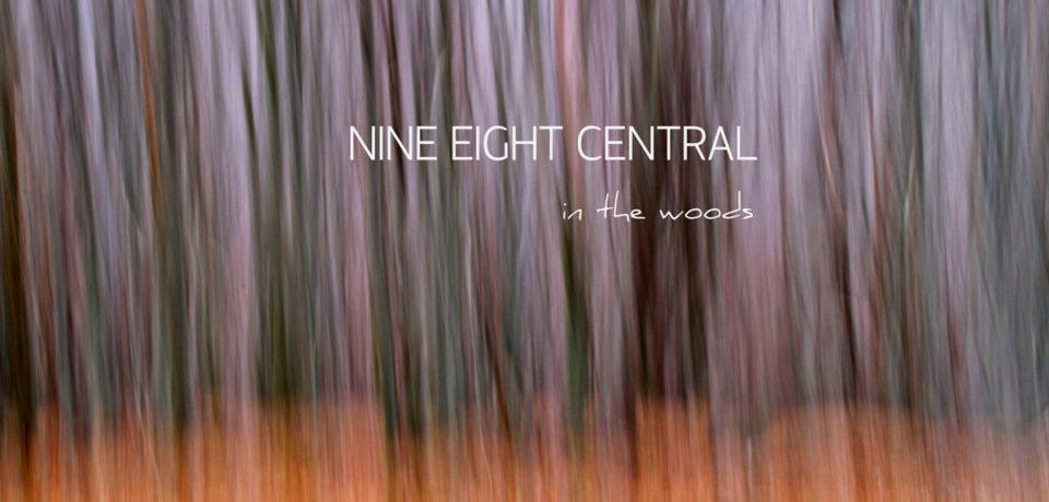 Dalle montagne del Verbano Cusio Ossola una ventata di novità con i Nine Eight Central e il loro debutto In the woods